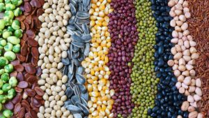 Buy and Sell Grains with Ease in Australia